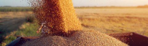 Ангажирана към прогреса на Българското селско стопанство.